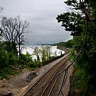 Along the tracks by rmc314