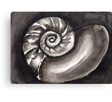 Black and White Seashell Canvas Print