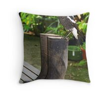Young Whitebacked Magpie with big ideas Throw Pillow