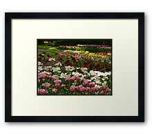 """Colourful """"Keukenhof"""" Framed Print"""