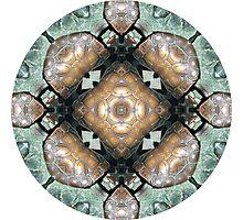 Frog Mandala Photographic Print