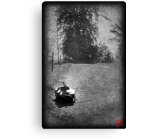 Forgotten Fun Canvas Print