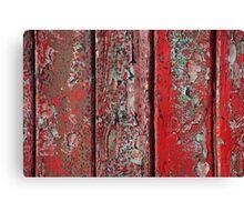 red door detail Canvas Print
