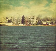 """Lakeside Amusement Park"" by eleven12design"