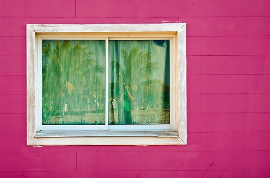Pink by Dylan Hamm