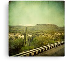 """Lost in the 70's Cactus"" Canvas Print"