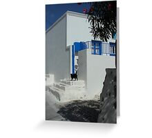 black cat at front of a white house in santorini Greeting Card