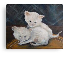 Kittens so CUTE! Canvas Print