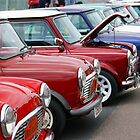 It's A Mini Line-up by KAGPhotography