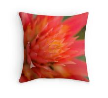 Bromeliad Bright Orange Throw Pillow