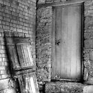 The Back Door by Eve Parry