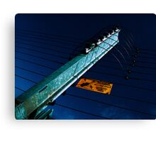 Electrofence Canvas Print