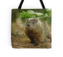 Groundhog Day, (okay, weekend) Tote Bag