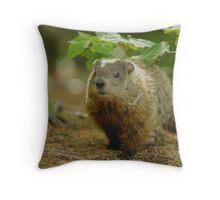 Groundhog Day, (okay, weekend) Throw Pillow