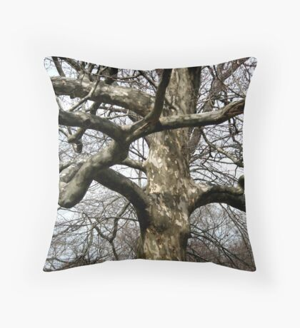Young and graceful Throw Pillow