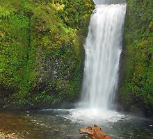 Lower Multnomah Falls Color by Leon Heyns