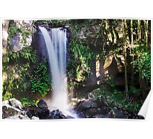 Curtis Falls waterfall Poster