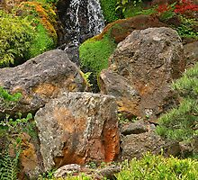 Water Fall:  Japanese Gardens, San Francisco by john forrant