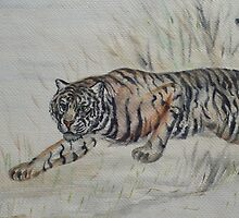 Chinese Crouching Tiger by Jedro