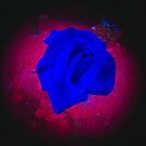 The Blue Rose by the57man