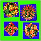 Just for Fun - Another Crazy Tulips Collage by BlueMoonRose