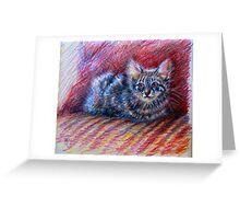 """camouflage stripes"" - kitten portrait Greeting Card"