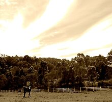 Running Forever - Horse and Owner  by Jennifer Rogers