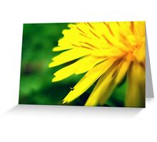 You Brighten up my World  Greeting Card