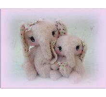 Eve and Elisha Elephants - Handmade bears from Teddy bear Orphans Photographic Print