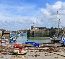 Newquay harbour by Len  Pinner
