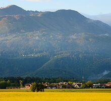 rapeseed field in Brnik with Kamnik Alps and Krvavec ski resort in the background, Slovenia by Ian Middleton
