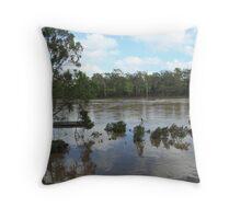 2011 South-East Queensland Floods Throw Pillow