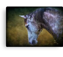 """Traveler"" Canvas Print"