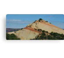 Petrified Sand Dune Canvas Print