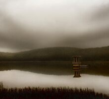Those Dam Memories by Bruce  Watson