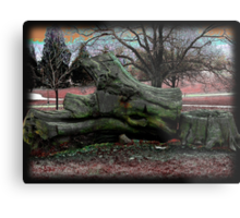 Far out and Woodstock Metal Print
