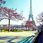 admiring Paris by faithie