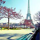 admiring Paris by faithie