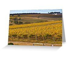 Autumn Vineyard - May 2011 Greeting Card