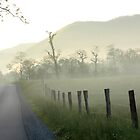 Cades Cove Morning Mist by J. L. Gould