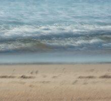 The Beach by Su Walker
