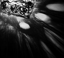 Light Study by Maliha Rao
