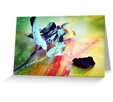 Flower In Natural Light Greeting Card