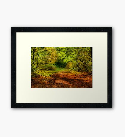 Once upon a time deep in the forest .....  Framed Print