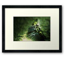 Beauty in the Breakdown - Green Framed Print