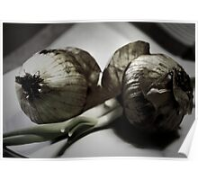 Two Onions Poster