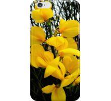 Broom Flower Beauty iPhone Case/Skin