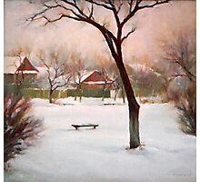 Winter twilight Photographic Print
