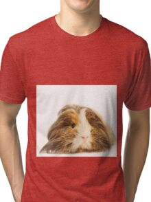 Cute Sheltie Long Hair Guinea Pig photo print Tri-blend T-Shirt