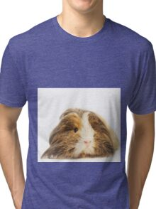 Cute Sheltie Long Hair Guinea Pig photo print Tri-blend T-Shirt